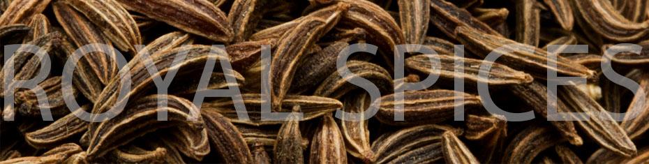 ASTA Quality Cumin Seed from Iran