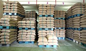 Syria Cumin Seed Stock